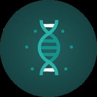 Genes/DNA